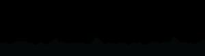 BEWIZYU logo